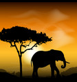 silhouette elephant with tree on the background of vector image
