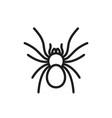 tarantula vector image