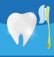 ttooth with toothbrush and toothpaste vector image vector image