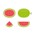 watermelons and slices vector image