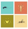 assembly flat shrimp lobster crab grasshopper vector image vector image