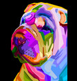 colorful shar pei dog on pop art style vector image vector image