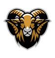 Head of ram mascot