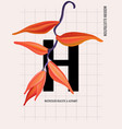 heliconians exotic floral print contrast vector image