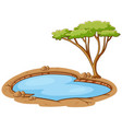 scene with green tree and small pond vector image