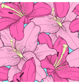 seamless background with pink lilies hand-drawing vector image vector image