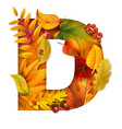 autumn stylized alphabet with foliage letter d vector image vector image