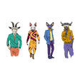different fashion models with animal heads set vector image