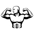 male bodybuilder flexing muscles vector image