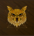 owl bird low poly design vector image vector image