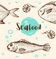 pattern with shrimp and fish vector image vector image