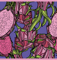 seamless pattern with dragonfruit vector image