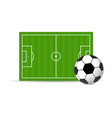 soccer field and ball vector image vector image