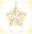 star lantern vector image