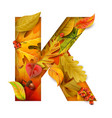 autumn stylized alphabet with foliage letter k vector image vector image