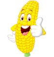 Cartoon happy corn giving thumb up vector image