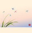 dragonflies and leaves grass on sunrise sky vector image vector image
