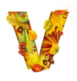 autumn stylized alphabet with foliage letter v vector image vector image