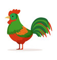 colorful cock poultry breeding vector image vector image