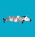 dead zebra african animal deceased corpse of wild vector image vector image