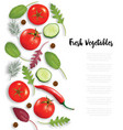fresh vegetables herbs and spices frame food vector image vector image