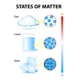 states of matter vector image vector image
