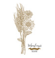 wheat chamomiles and cornflowers bouquet hand vector image vector image