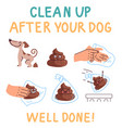 clean up after your dog information instruction vector image