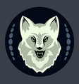 head of a gray wolf on a black background vector image vector image