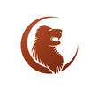 lion face heraldic animal element heraldic coat vector image