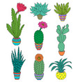 set of hand drawn houseplant vector image vector image