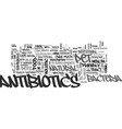 antibiotics as a cure for stomach ulcer text word vector image vector image
