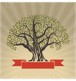 Big Old Tree vector image vector image