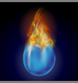 burning water drop with fire flame vector image