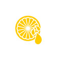 clean lemon element design template vector image