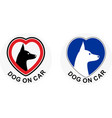 dog on car vector image