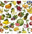 fruits as seamless pattern background for wrapper vector image vector image