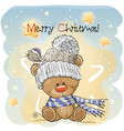 greeting christmas card with teddy bear vector image vector image