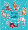 badge with diving cats in ocean stickers vector image