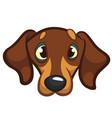 cartoon of dog vector image vector image