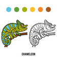 coloring book chameleon vector image vector image