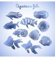 Graphic aquarium fish vector image