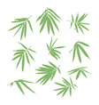 bamboo leaf vector image vector image