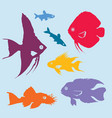colorful aquarium fish silhouettes set vector image