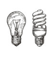 lightbulb sketch energy electric light bulb vector image
