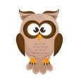 owl bird cartoon vector image