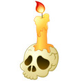 skull and candle cartoon vector image