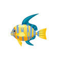 tropical exotic angel fish bright colorful vector image vector image