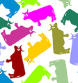 Cow color seamless ornament pattern of animals vector image