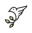 beauty hummingbird logo vector image vector image